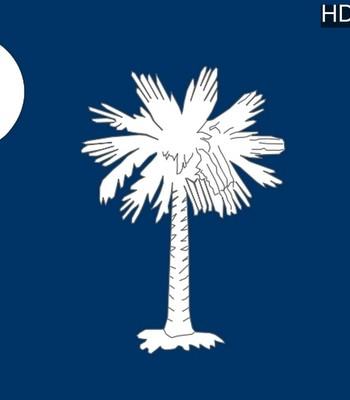 Porn Comics - Adventures Of Big Mack 3 – South Carolina Porn Comic